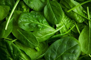 spinach_main
